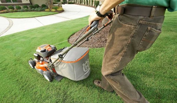 Excellent Reasons To Buy A Lawn Mower Today